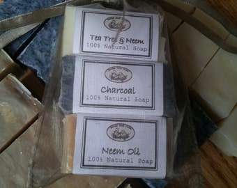Complexion Soap Sampler - Oily Acne Prone Skin - Tea Tree & Neem - Charcoal - Neem Oil
