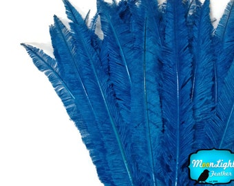 Centerpiece Feathers, 5 Pieces - TURQUOISE BLUE Long Ostrich Nandu Trimmed Feathers : 3584