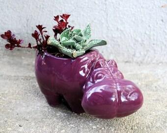 hippo planter  succulent planter in grape purple