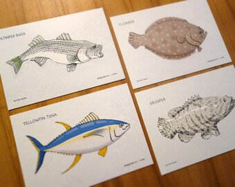 Saltwater Fish postcards (set of 4)