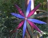 "Beautiful Stained Pine Starburst Wreath 17"" Diameter handcrafted by Laughing Creek"