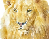 Lion Watercolor Painting - 8 x 10 (8.5 x 11) - Giclee Print Reproduction - African Animal - Nursery Art