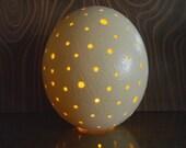 Ostrich Egg Lamp