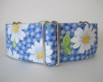 Blue Martingale Collar, 2 Inch Martingale Collar, Daisy Dog Collar, Blue Dog Collar, Greyhound Collar, Dog Collar, Greyhound Martingale