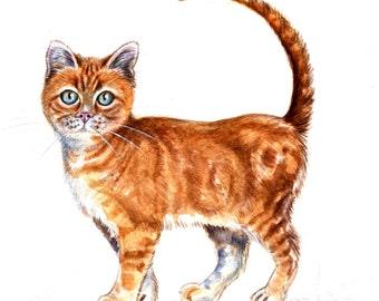 8x10  Original Watercolour. Red cat.. NOT A PRINT ..Original Painting nursery -  home decor -childrens room