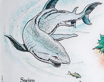 1963 Elementary School Science Chart - 18 x 24 Poster - Illustrating Animals & Plants
