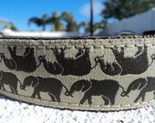 """Dog Collar Elephant Reflections 1"""" width side release  buckle adjustable - martingale collar is cost upgrade"""