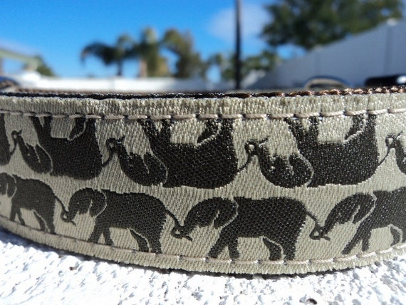 "Sale Dog Collar Elephant Reflections 1"" width side release  buckle adjustable - martingale collar is cost upgrade"