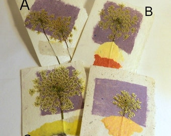 Light Indigo Single Queen Anne's Lace Flower Cards--Choose one