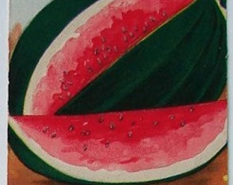 1920s Antique Dixie Watermelon Seed Pack Burts Garden Water Melons