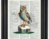 BOGO SALE Dictionary Art Print Wall Decor Bathroom Print on Dictionary Page Owl Book Print