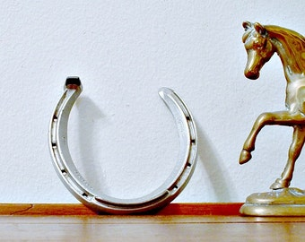 Victory Horseshoe  Equestrian Good Luck Decor Race Horse Shoe Wall Decor