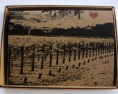 Wine Country Lover's note card assorted boxed set of 8