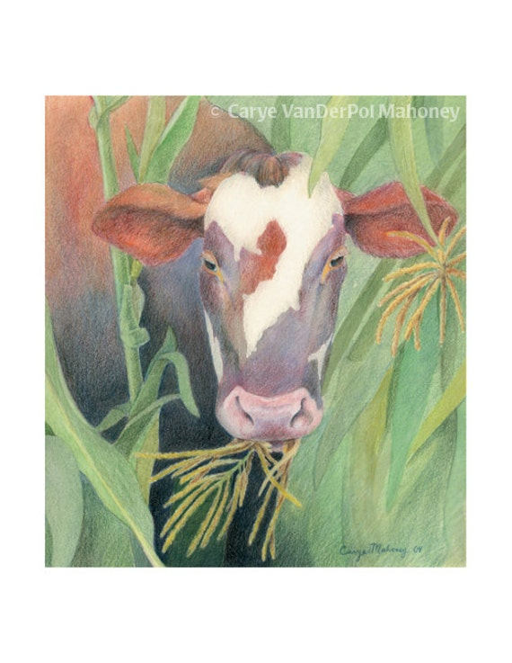 Farm Animal Note Cards - Pack of 5 - GREAT Christmas Gift or Stocking Stuffer - Cow in corn field, geese, piglets, blue sheep, hens