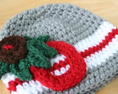 Buckeyes Hat, Red and Gray crochet newborn hat, Ohio State Buckeyes, baby boy hat, Newborn to 12 month sizes available