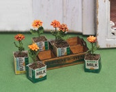 Miniature Crate of Marigolds Kit