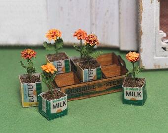 Miniature Crate of Marigolds Kit