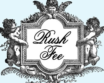RUSH FEE- Get your order in 48hrs or LESS From Time of Purchase - Cutie Putti Paperie