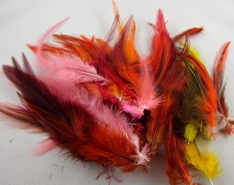 feathers orange red yellow mix 3 to 6 inches craft feathers K141