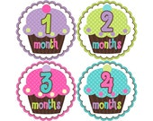 Baby Announcement, Monthly Baby Stickers, Monthly Baby Photos, Baby Gift, Baby Month Stickers, Monthly Stickers, Cupcakes (G083)
