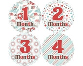 Baby Announcement, Monthly Baby Stickers, Monthly Baby Photos, Baby Gift, Baby Month Stickers, Monthly Stickers, Red and Blue (G102)