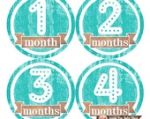Baby Monthly Stickers FREE Baby Month Milestone Sticker Baby Month Stickers Baby Girl Bodysuit Stickers Baby Shower Gift Turquoise Teal 004G