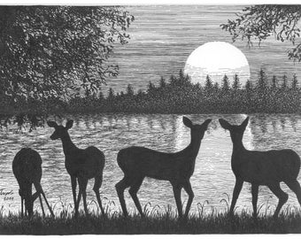 Deer at Dusk  - 11 x 14 Matted Print