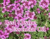RED THYME Pure Essential Oil, Organic (1/2 or 1 full ounce!)