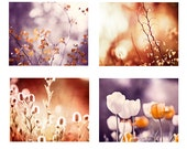 Purple, Rust Photography Set, plum brown orange autumn fall cream nature wall art botanical print set branches red flower photograph artwork