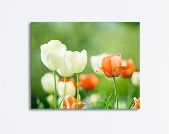 """Green Orange Flower Canvas - nursery print large floral white tulips wall art nature photo print botanical colorful photography, """"Spirited"""""""