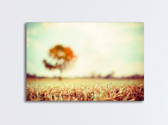 """Large Photography Canvas Wrap - autumn fall tree wall print landscape nature cream gold beige light brown orange yellow, """"In My Dreams"""""""