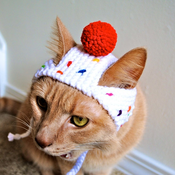 Cupcake Costume for Cats Hand Knit Cat Hat Cat Halloween