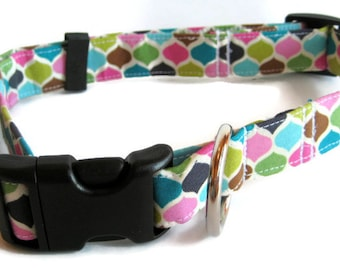 Modern Punk Dog Collar size Extra Large