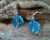Vivid Blue Seaglass Earrings