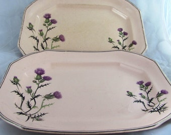 Two Antique Taylor Smith Taylor Unique Vegetable Platters 1800s Pink with Purple Thistle flowers Rare Design