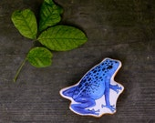 Frog Animal Pillow Toy. Handmade Organic Cotton Poison Dart Frog by Aly Parrot on Etsy.