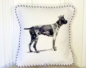 """shabby chic, feed sack, french country, vintage German shorthair pointer with french ticking  welting 14"""" x 14"""" pillow sham."""