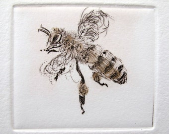 Busy little honey bee. Limited edition drypoint