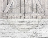 TWO IN ONE 8ft x 16ft Vinyl floordrop backdrop Vinyl Photography / Light Barn Doors Painted Peeling