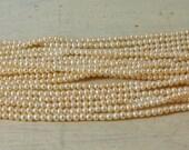 AAA Cream/White potato Pearls - 16 inch strand - 2.5-3mm
