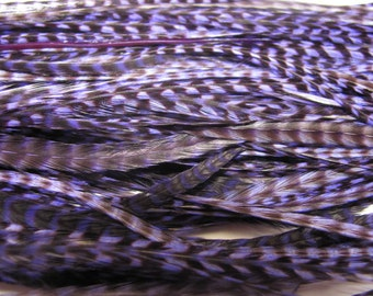 12 Grizzly Long Rooster Saddle Hackles - Purple (8 - 10 inches) Hair Extension Feathers