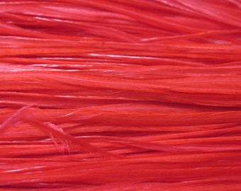 12 Long Rooster Saddle Hackles - Red (8 - 10 inches)