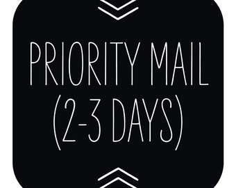 Priority 2-3 Day Shipping with Tracking