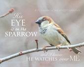 "Inspirational Bird Art Photograph 8x10 ""His Eye is on the Sparrow"" home decor"