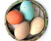Wooden Eggs - Heritage Breed Painted Eggs - Wood Toy - Kitchen Decoration - Eco Friendly Natural Toys - Set of 4