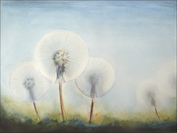 Dandelion Dreams, Watercolor Painting Dandelions Art Flower Watercolor Original Painting, Plants Art, Floral Aquarelle by Dorota Polland