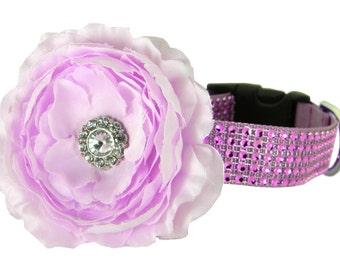Purple Rhinestone Flower Dog Collar,  Dog Collar Flower: Lavender/Lavender Rhinestone