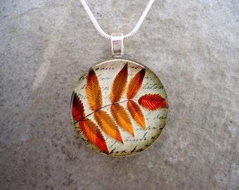 Leaf Jewellery - Fall jewelry - Autumn Leaves 18