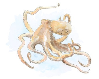 Watercolour Octopus Print