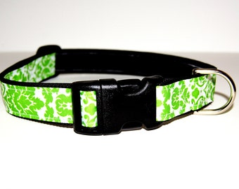 Last Chance! Spring Clearance Sale! Green Brocade Dog Collar Adjustable sizes (M, L, XL)